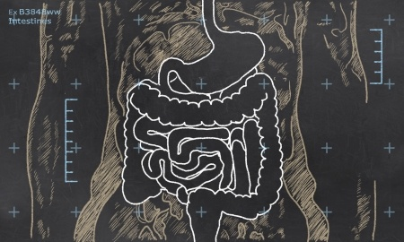 24916523 - x-ray of intestines sketched on a blackboard